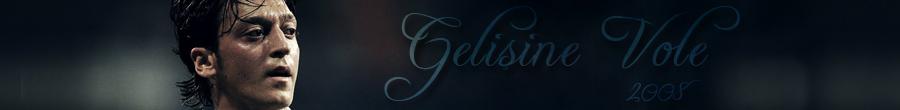 - Gelişine Vole -