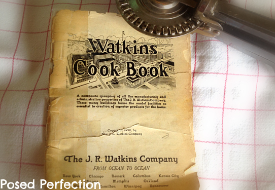 Posed Perfection Watkins Brownies - Better homes and gardens brownie recipe