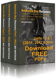 Free PDFs of 2011, 12 & 13