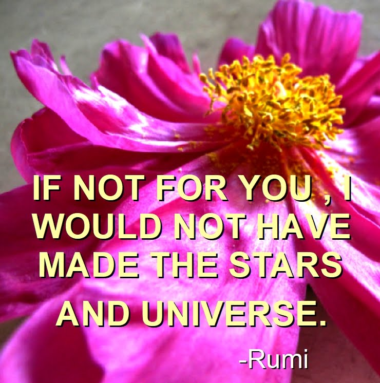 NEW RUMI QUOTES