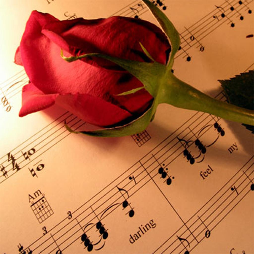 http://4.bp.blogspot.com/-_tFZz97kN0I/URDTf2-gmeI/AAAAAAAAH-A/5KaISjKtu8c/s1600/Valentines+Day+Wallpaper+03.jpg