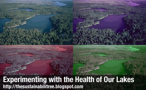lake, multi-coloured, nature, aerial photo