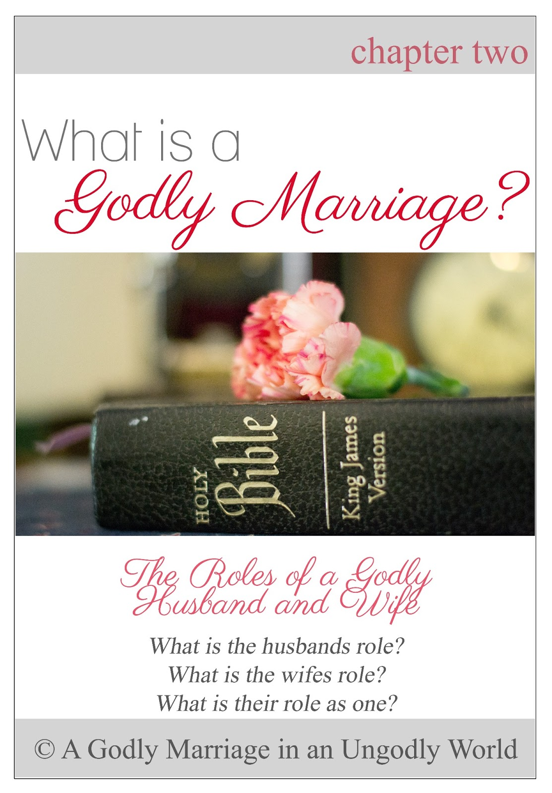 the biblical marriage and the role of the religion in the purpose to the marriage in the modern soci Religious marriage recognizes and creates the rights and obligations intrinsic to matrimony before that religion religious marriage is known variously as sacramental marriage in catholicism, nikah in islam, nissuin in judaism, and various other names in other faith traditions, each with their own constraints as to what constitutes, and who.
