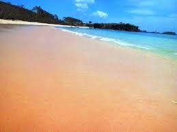 http://roniardy.blogspot.com/2015/03/5-keunikan-pulau-lombok.html