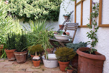 Unser Gartenparadies