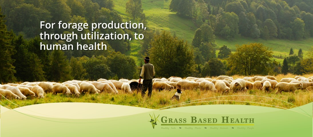 Grass Based Health