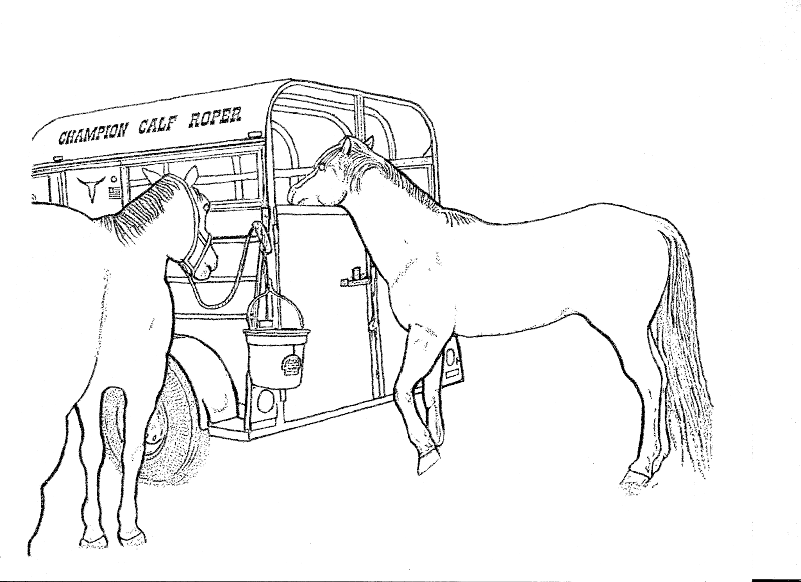 RODEO COLORING PAGES Two Horse