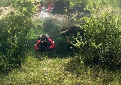 Indahnya Padang Rumput Unik Di Bawah Air [ www.BlogApaAja.com ]