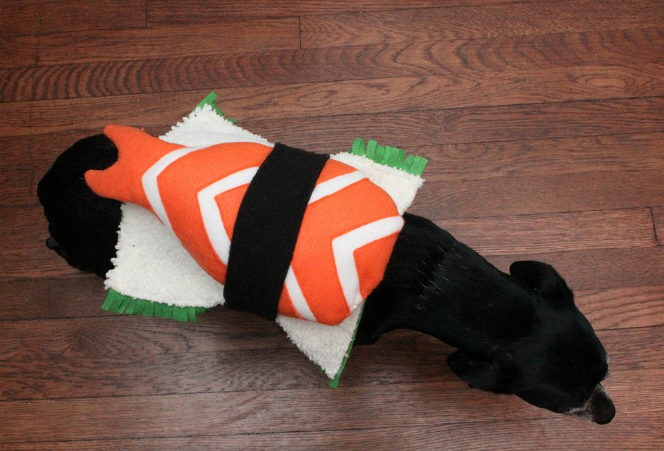 Monday October 28 2013 & EAT+SLEEP+MAKE: DIY Sushi Costume for a Dog