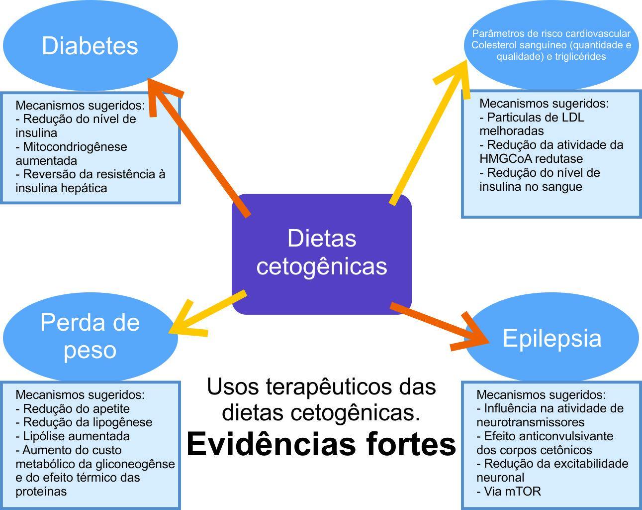 dieta%2Bcetogenica%2B-%2Bevidencias%2Bfortes.jpg