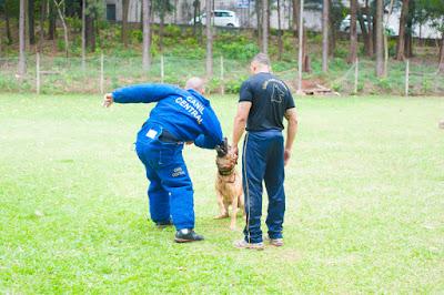 Treinamento de um cão no Canil da PM em São Paulo (Foto: Cauê Moreno)