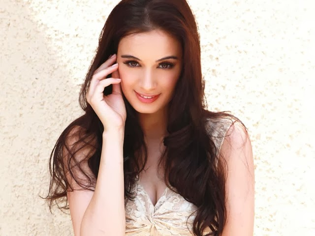 Evelyn+Sharma+Hd+Wallpapers+Free+Download045