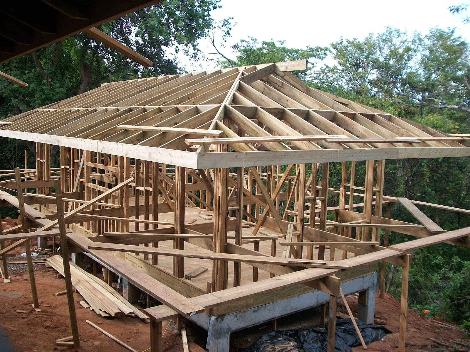 Welcome to home of will holladay roof for House roof construction
