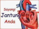 Cara kerja jantung