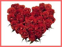 cinta sekuntum bunga mawar