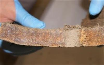 Δείγμα από δέρμα μαμούθ «κλειδί» για τη νεκρανάσταση του είδους