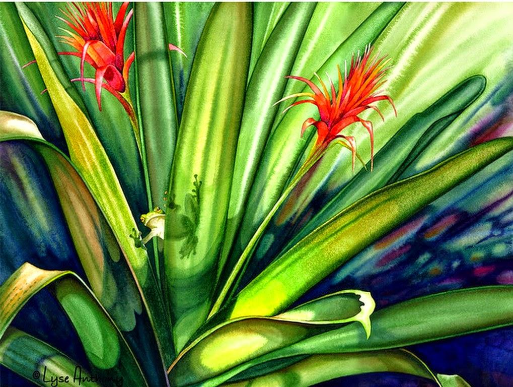 cuadros-de-flores-selvaticas-acuarelas