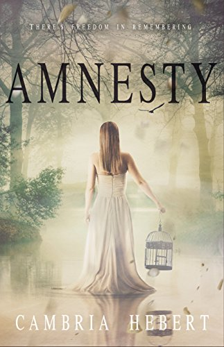 Amnesty (Amnesia Duet #2) by Cambria Hebert (CR)