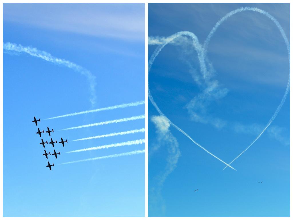 snowbirds planes