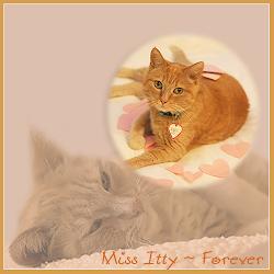 RIP MISS ITTY
