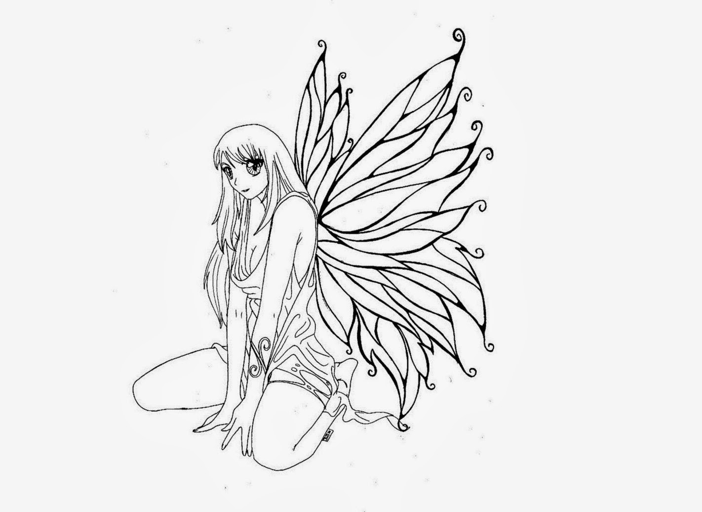 colours drawing wallpaper  butterfly fairy queens colour