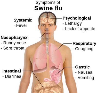 Rule Of 6ix When You Say Flu What Do You Really Mean