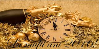 Pagina Analize economice vă urează un An Nou fericit!