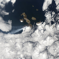 Volcan Sierra Negra eruption in 2005, Isabela Island, Galapagos