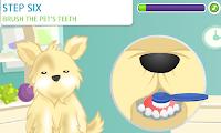 jogos de Cuidar de Lindos Animais