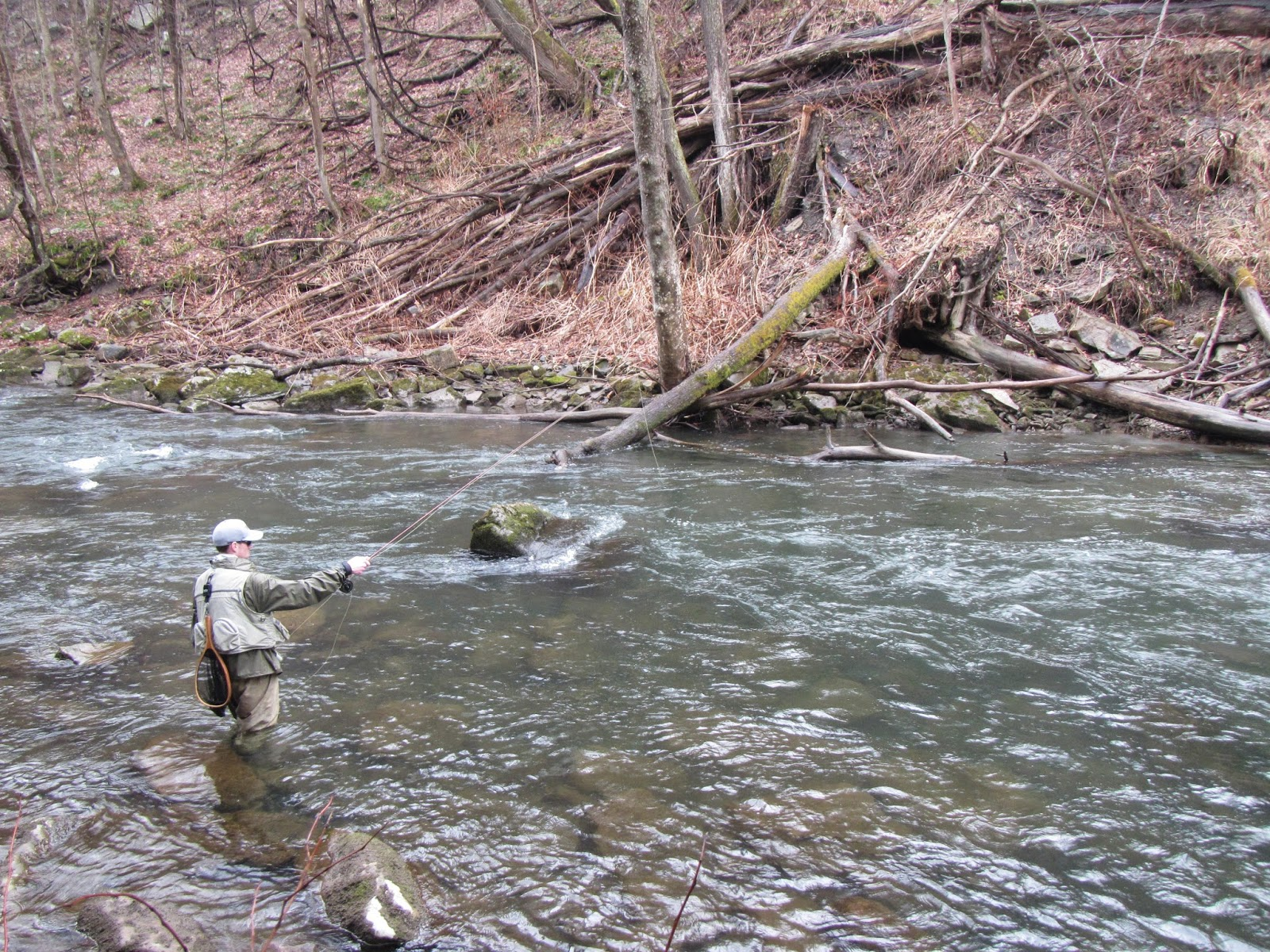 Western maryland fly fishing a serving of bug soup on the for Md trout fishing