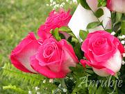 Labels: Flores