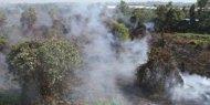 Pelaku pembakaran lahan di Riau mantan pimpinan Bank BRI Medan