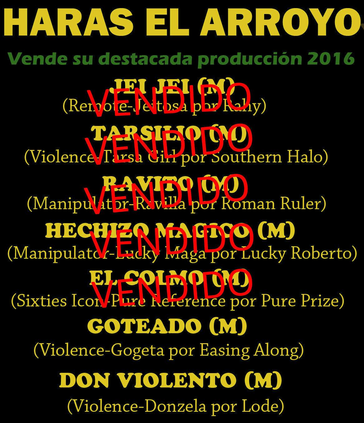 HS EL ARROYO PROD 1 E