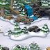 ¡Montaña y Bosque remodelados!