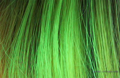Ion Permanent Creme Hair Color