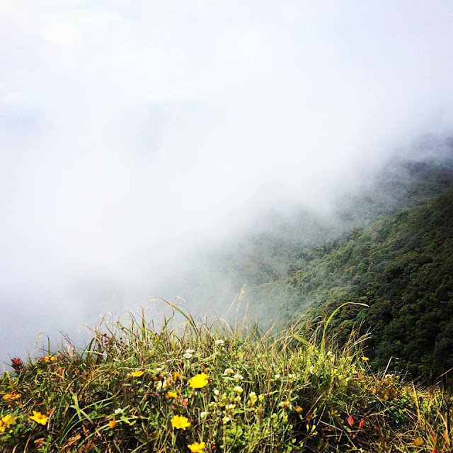 Cima del Parque Nacional Amboró - Samaipata Bolivia