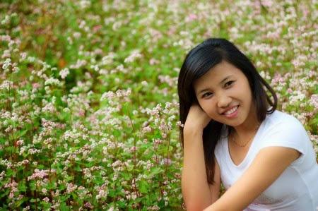 Hoa tam giác mạch Photo