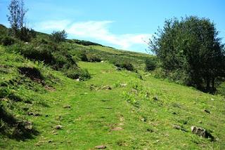 Sierra del Sueve, la Biescona, majada del Bustacu