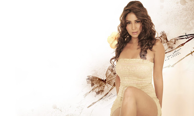 Hot Kim Sharma Wallpapers