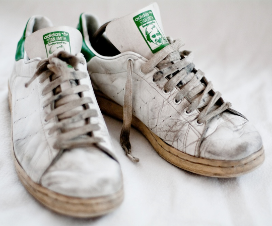 Adidas Stan Smith Palmier