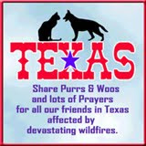 For our Texas furiends