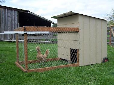 B.P.B. Large Chicken Tractor