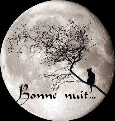 Sms romantiques pour souhaiter bonne nuit 2014 les plus for Nuit romantique