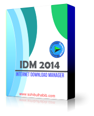 IDM 6.19 Build 8 Full Patch