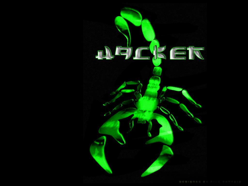 http://4.bp.blogspot.com/-a1DLimNs1ws/UBlo9d9chCI/AAAAAAAAAQ4/KwNd_9wwwYw/s1600/Hacker_Wallpaper_ta4jd.JPG