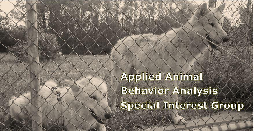 Animal Behavior Analysis (ABAI SIG)