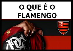 O que é o Flamengo?