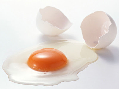 Manfaat Putih Telur Untuk Kesehatan Tubuh