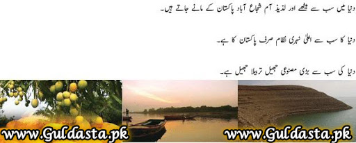 desktop wallpaper,general knowledge in urdu,hadees in urdu,history of pakistan,map of pakistan,map pakistan,novels in urdu,old pakistani songs,pakistan,pakistan city,pakistan economy,pakistan flag,pakistan flag images,pakistan flag pic,pakistan gdp,pakistan history,pakistan images,pakistan map,pakistan people,pakistan photos,pakistan population,pakistan video,pakistani culture,pakistani women,population of pakistan,quran pak,sms online,story in urdu,urdu novel list,urdu novels,urdu novels online,urdu stories,urdu story,urdu writing