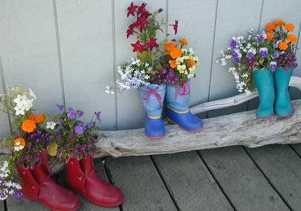 Ask Erena Gardening For Beginners